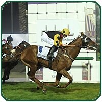 Strategic News winning in Dubai. Image: Andrew Makins/Dubai Racing Club